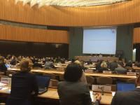 VN-Waffenkonvention zu letalen, autonomen Waffensystemen (LAWS), Genf 2015 | Bild (Ausschnitt): © Facing Finance